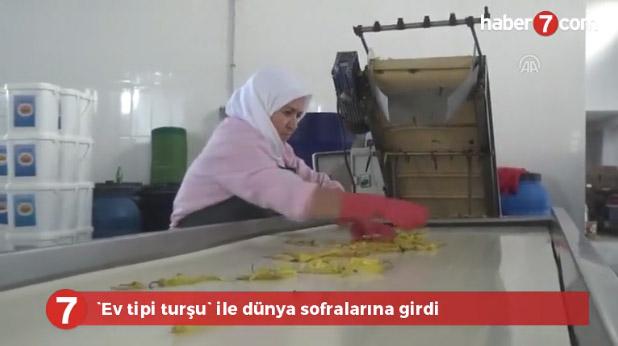 gunsan_haber7